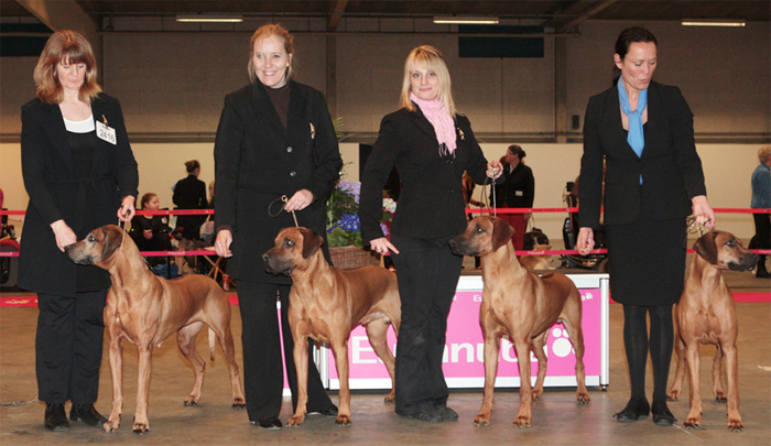 Best Breeders Group 2011
